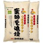 (玄米) つがるロマン 10kg 送料無料 青森県 令和元年産 (5kg×2)