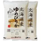 (玄米) ゆめぴりか 10kg 送料無料 北海道 令和元年産 (5kg×2)