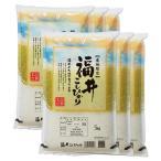 福井県 コシヒカリ 30kg 送料無料 特A米 (米 お米 白米27kg 玄米30kg 28年産)