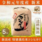 平成29年度産新米 もっちりとした食感 ほのかに広がる甘み 新潟産「特別栽培米」 こだわりのお米 コシヒカリ 精米 5kg 送料無料 サンクスファーム黒鳥