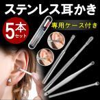 耳かき 耳掃除 ピンセット精密 耳垢 耳かき 6点セット ステンレス製 耳かき (専用ケース付き)