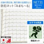 NET31 防犯 盗難防止ネット 巾501〜600cm 丈101〜200cm