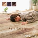 ラグ カーペット ホットカーペットカバー 約200×250cm 木目調 3畳 おしゃれ 洗える 床暖房対応 こたつ敷布団