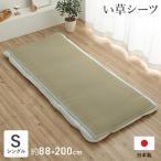 い草(無染土)の汗取敷きパッド 草ね シングルサイズ(約88×200cm) 国産井草(ib-tm)