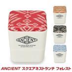 ショッピング弁当 弁当箱 日本製 二段  「フォレスト」 ランチボックス おしゃれ レンジ 食洗機対応