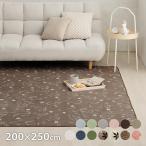 カーペット 3畳 「WSセリゼ」 約200×250cm ホットカーペットカバー 3畳用 抗菌 防臭 シンプル 洗える ラグ カーペット 長方形 床暖房対応(tm)