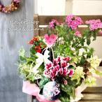 季節の寄せかご 季節の寄せ鉢 季節のお花でお任せ寄せカゴ Lサイズ 送料無料