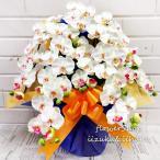 光触媒加工 胡蝶蘭 白(ホワイト系) Sサイズ5本立ち 陶器鉢植え 花ギフト ラッピング・メッセージカード無料 送料無料