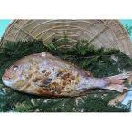 焼魚 天然鯛の浜焼き