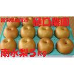 新潟県加茂産 樋口農園 梨 なし 南水梨 5kg ご贈答に 9月中旬〜10月中旬まで