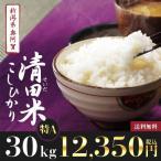 29年産 新米30kg 新潟県奥阿賀産 清田米コシヒカリ【送料無料】
