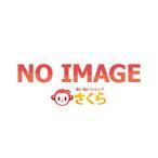当店おすすめ商品 照明器具 NNW2010ENZLE9