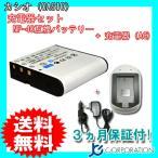 充電器セット カシオ(CASIO) NP-40 互換バッテリー + 充電器(AC)