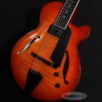 Sadowsky Guitars / Archtops Series SS-15 (Violin Burst)