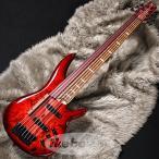 Ibanez �����Хˡ��� / SRAS7-RSG Ashula Bass (SPOT MODEL)