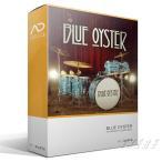 XLN Audio Addictive Drums2 Blue Oyster ADPak