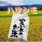 30年産 家族のお米 ハツシモ 白米10Kg