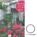 Yahoo!イケダグリーンセンターヤフー店ローズスタイルシリーズ リング 直径30cmタイプ 第一ビニール