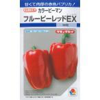 野菜種 カラーピーマン(パプリカ) フルーピーレッドEX 30粒 タキイ交配