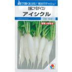 野菜種 白二十日大根 アイシクル 6ml タキイ種苗