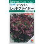 レタス 種   レッドファイヤー   種子 小袋 約1.5ml