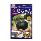 野菜種 ミニカボチャ 坊ちゃん 10粒 協和交配