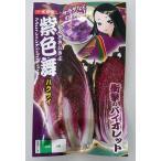 ナント種苗 ハクサイ 紫奏子 野菜 40粒