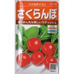 【ゆうパケット対応可能】野菜種 ハツカダイコン さくらんぼ 9ml