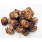 種芋 サトイモ(里芋) 中国産 約1kg