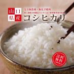 送料無料「コシヒカリ」5kg/令和2年産/無農薬米/無化学肥料米/特別栽培米/エコやまぐち100/玄米/白米/一粒の夢/優秀賞受賞米/こしひかり/くらとも