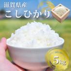 29年産新米 滋賀県産ぎおん米コシヒカリ 送料無料 精米 5kg 真空パックも選択可 だんらん 近江米 新米