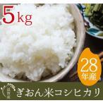 28年産 コシヒカリ 送料無料 精米 5kg 真空パックも選択可 滋賀県産ぎおん米 近江米