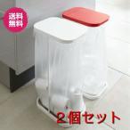 ショッピング分別 ごみ箱 分別ゴミ袋 ホルダー ルーチェ  ごみ袋スタンド2個セット 山崎実業