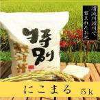 新米にこまる 5kg - 熊本県産 特別栽培米  精白米  令和2年産