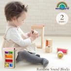 積み木 ランキング 木のおもちゃ ワンダーワールド レインボー・サウンド・ブロックス
