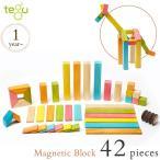 ブロック 積み木 マグネット 知育玩具 知育 tegu(テグ) マグネットブロック 42ピース/ティント TYTU00501