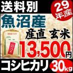 新米 28年産 魚沼産コシヒカリ 玄米 産直 30kg 送料無料 (一部地域を除く)