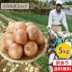 高糖度玉ねぎ #かくし玉【訳あり】5キロ#