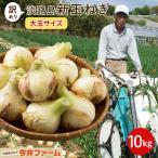 淡路島たまねぎ10kg(2Lサイズ)