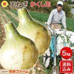 淡路島たまねぎかくし玉5Kg#かくし玉 5K#