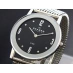 【送料無料】スカーゲン SKAGEN 腕時計 39LSSB1(242233)