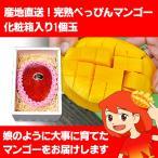 産地直送!完熟べっぴんマンゴー 化粧箱入り1個玉、メッセージカードも人気!