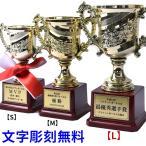 トロフィー 優勝カップ 文字彫刻無料 紅白リボン無料 ゴールド 金色 ゴルフ サッカー 試合 記念品 コンペ 軽量 Lサイズ t-cup-l