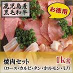 国産黒毛和牛 焼肉セット ロース/カルビ/タン/ホルモン/ミノ 1kg