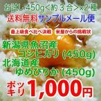 新潟県魚沼産こしひかり 北海道産ゆめぴりか  令和2年産 お試し450g 送料無料 魚沼産こしひかり(450g) 北海道産ゆめぴりか(450g)