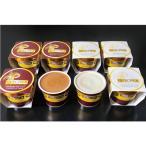ショッピングお中元 お中元 御中元 アイスクリーム ギフト 送料無料 QUECHUA(ケチュア) チョコレートアイス 型番:QAC-40