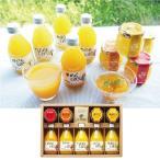 ショッピングお中元 お中元 御中元 ジュース ギフト 送料無料 伊藤農園 100%ピュアジュース&ジュレセット 型番:V-113