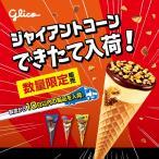 洋菓子のヒロタ ヒロタのシューアイスクリーム16個入 ギフト お取り寄せ 送料無料 アイスクリーム