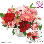 母の日 花束『真っ赤なカーネーション』 ギフト プレゼント 送料無料 花束 カーネーション