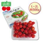 お中元 御中元 メロン ぶどう 桃 ギフト 詰め合わせ 送料無料 東北産 夏のフルーツギフトセット